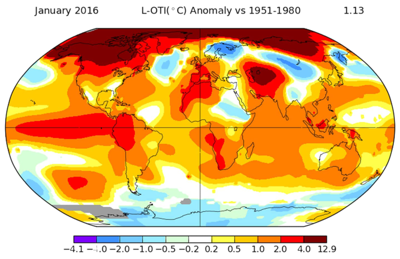 Temperature anomalies for January, 2016. NASA Goddard Institute for Space Studies.png