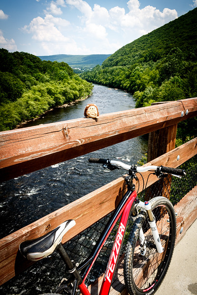 Mountain Biking Lower Gorge Trail (June 013)