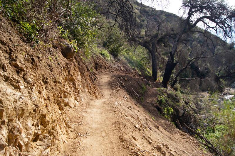201201291616-El Prieto Trailwork.jpg