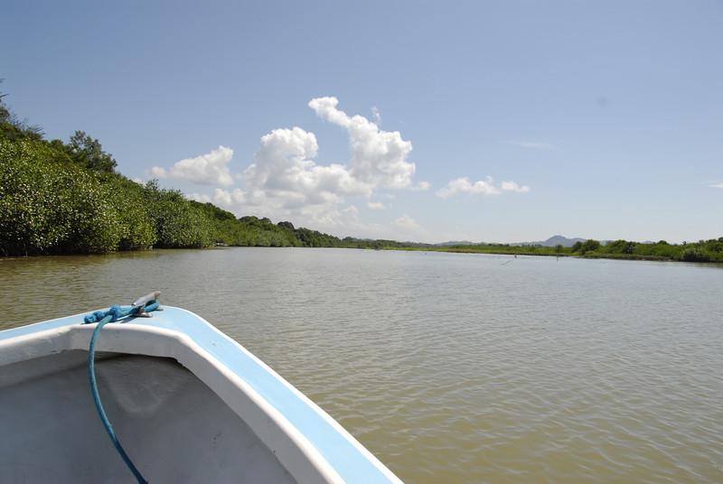 080119 9503 Costa Rica - Manuel Antonio - Mangroves Boat Tour _E _L _G ~E ~L.JPG