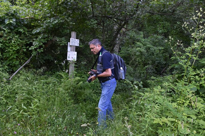 2019_06_26 CS Trail (64).JPG