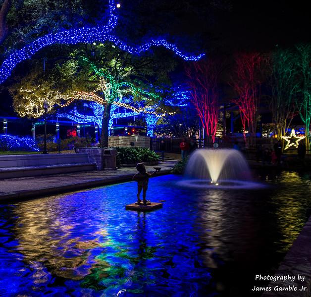 Houston-Zoo-Lights-2925.jpg