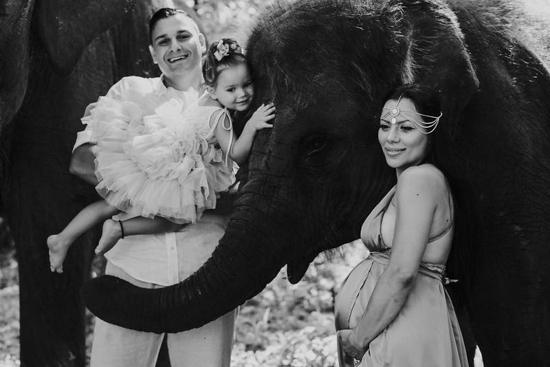 VTV_family_photoshoot_elephants_Bali_ (80).jpg