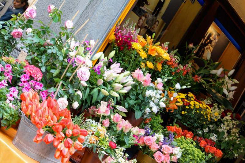 Flower market on Hauptstraß in Heidelberg