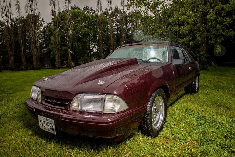 Mustang-4.jpg
