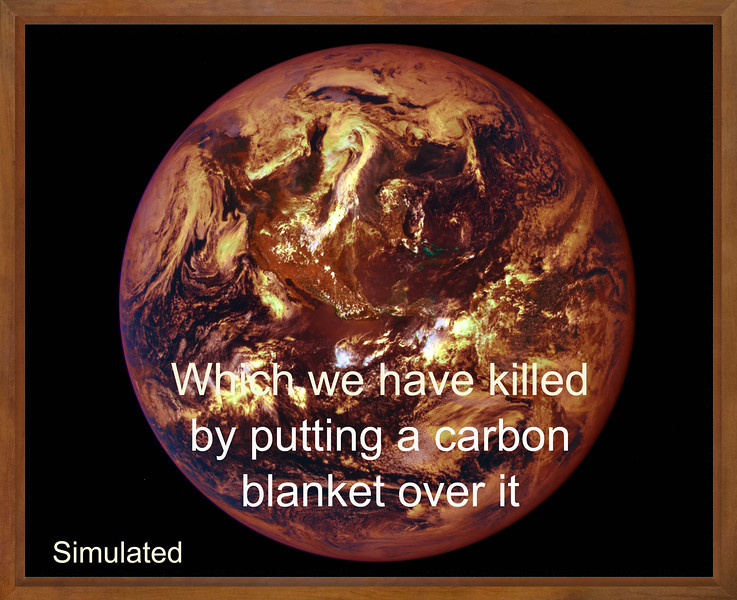 which we have killed by putting  a carbon.jpg