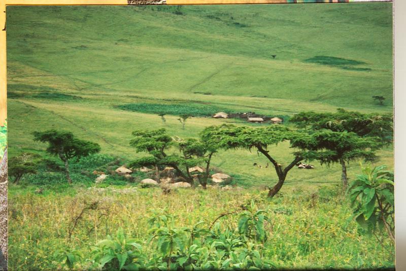 1995-125.jpg