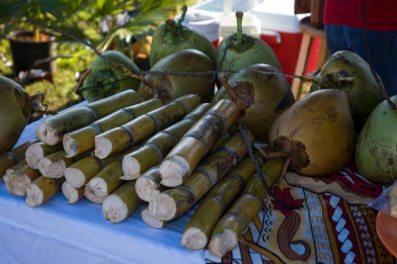 Sugar cane, Coconuts