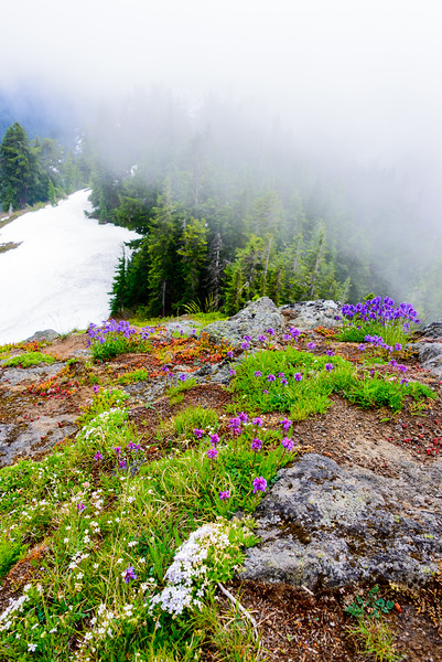 Rampart Ridge_6_28_17 (1 of 10).jpg