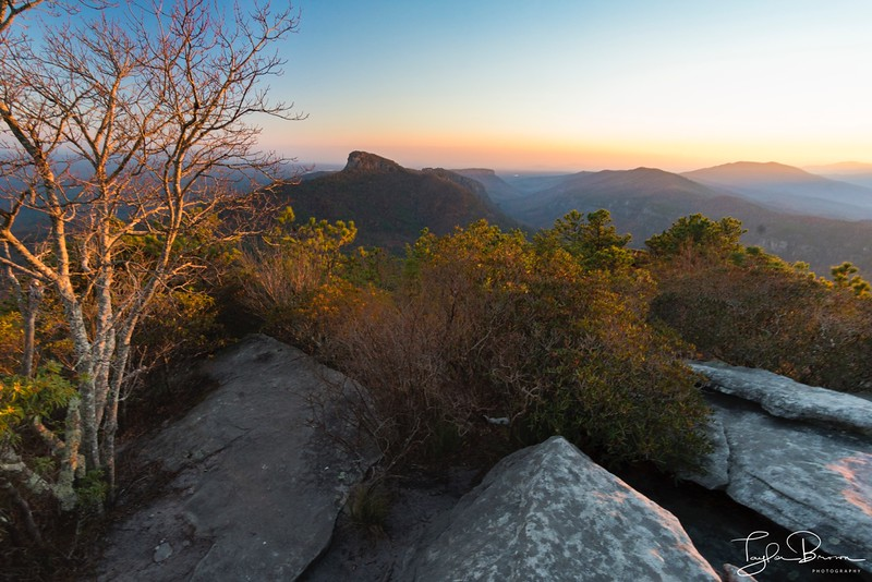 HAWKSBILL - LINVILLE GORGE, NC
