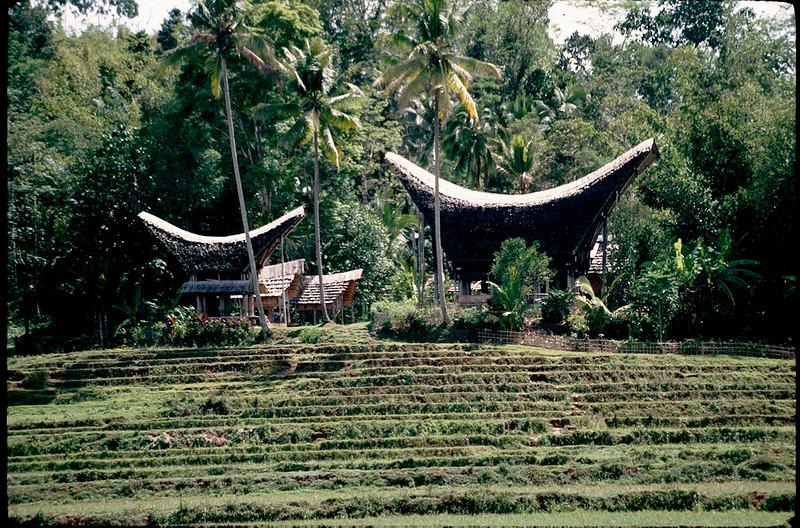 Indonesia1_099.jpg