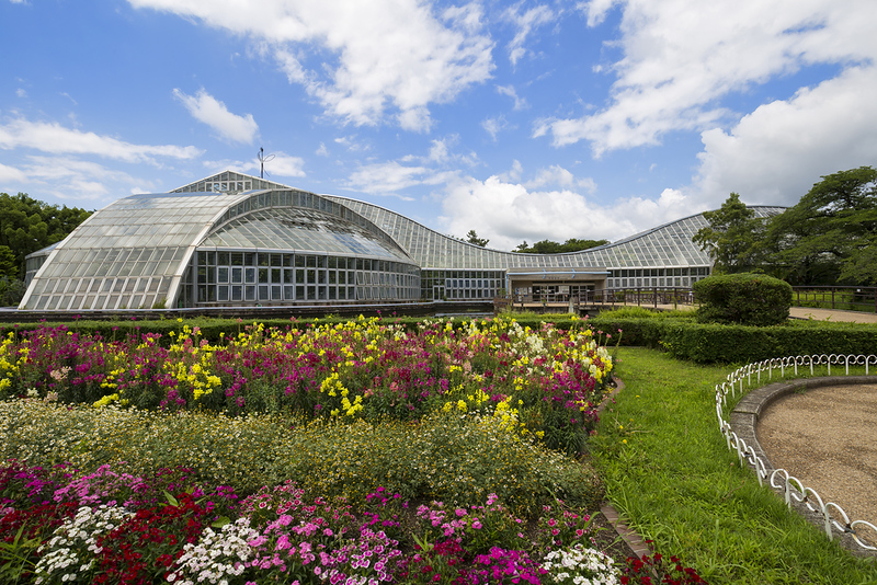 Conservatory of The Kyoto Botanical Garden. Editorial credit: Isaac Mok / Shutterstock.com