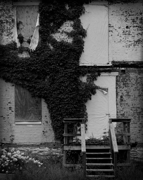 Bricks and Ivy [2]
