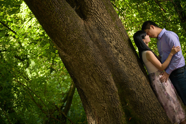 Amy and Lu Engagement @ Henry Cowell State Park in Felton