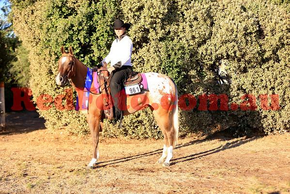 2014 03 01 WA Paint Horse State Championships Western Ridden