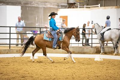 Horse 175