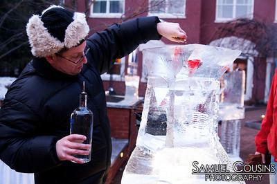 Ice Bar 2010
