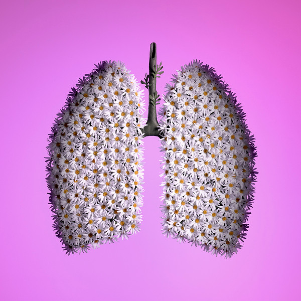 Photographer-David-Arky-Conceptual-Still-Life-Creative-Space-Artists-Management-2-Fitness-Lungs.jpg