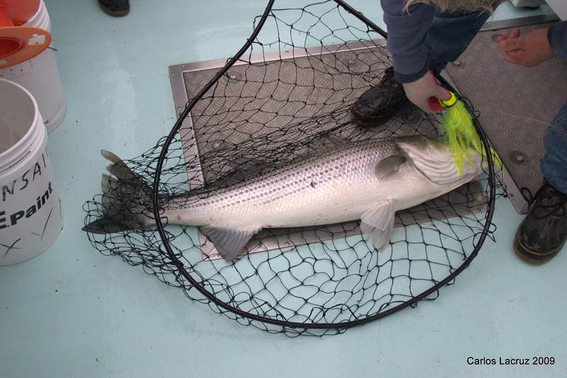 Lorton Fishing Trip-9.jpg