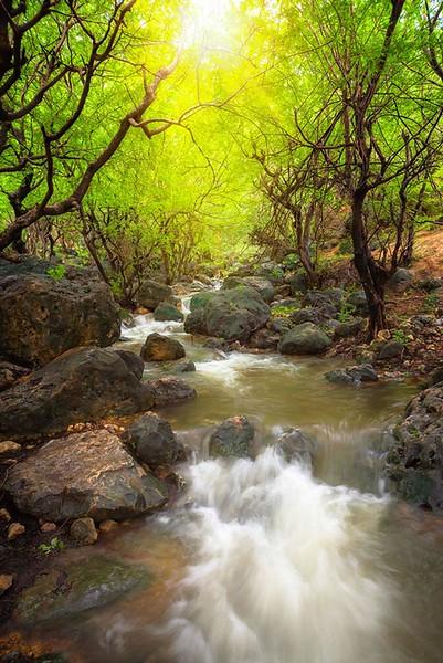Landscape-016.jpg