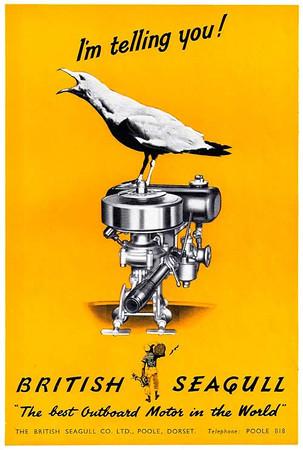 British Seagull
