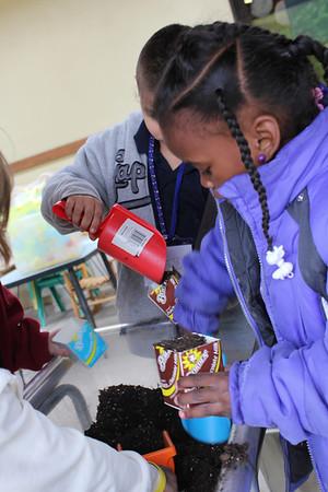 Kindergarten sharing program with McKinley