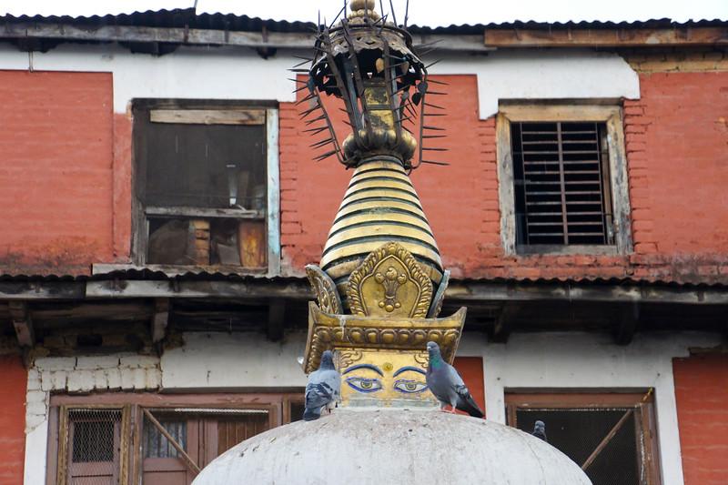 nepal 2011 (351 of 382).jpg