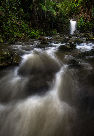 Paisajes Pluviales