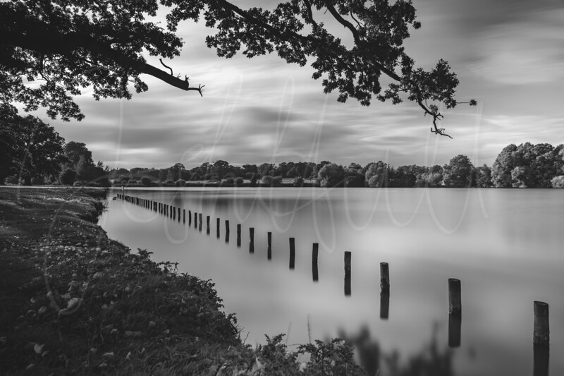 Black and White Image of Corsham Court Lake