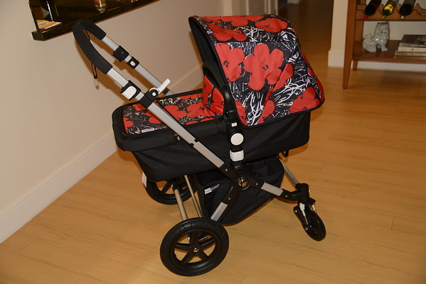 Aria's Stroller - Thanks Pap!