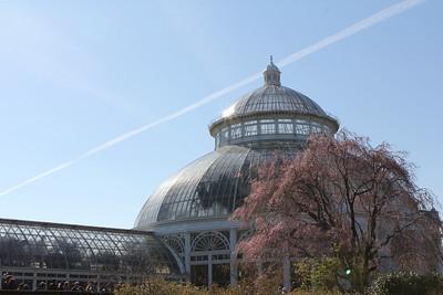늘푸른 뉴욕 식물원 나들이