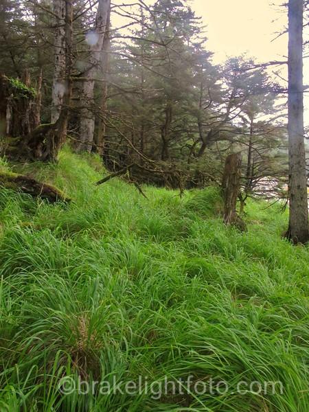 Tian Village site