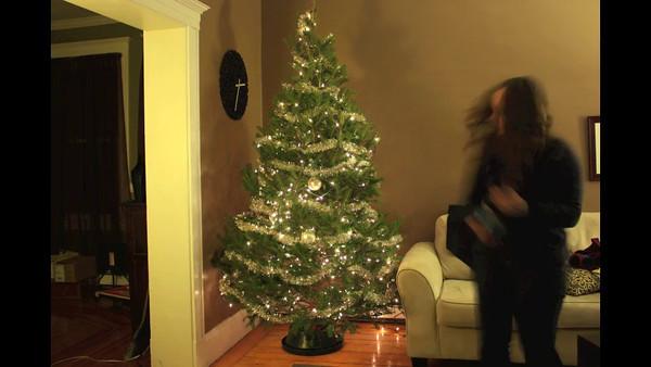 Decorating the Treee - 2011