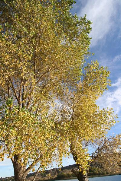 Lake Elizabeth 070_filtered.jpg