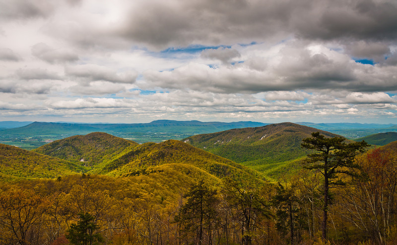 View of Appalachian Mountains from an overlook on Skyline Drive, Shenandoah National Park, Virginia