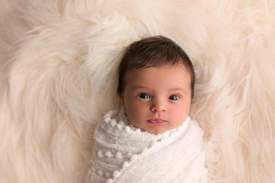Maggie P Newborn