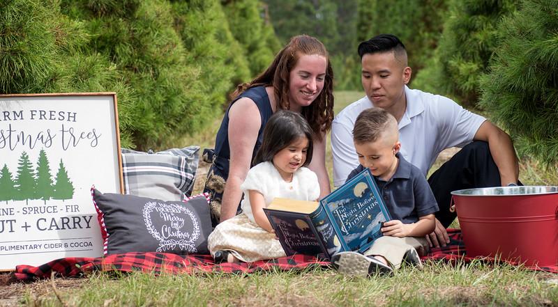 Phan family sin book.jpg