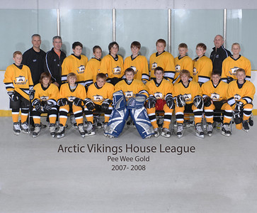 2007-2008 Pee Wee Gold