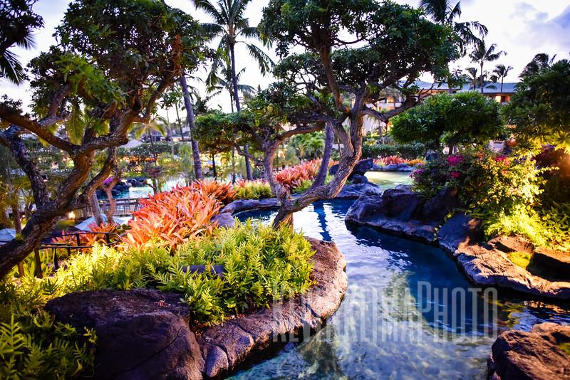 Kauai2017-006.jpg