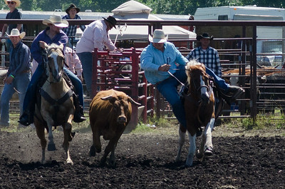Steer Wrestling Saturday 2014