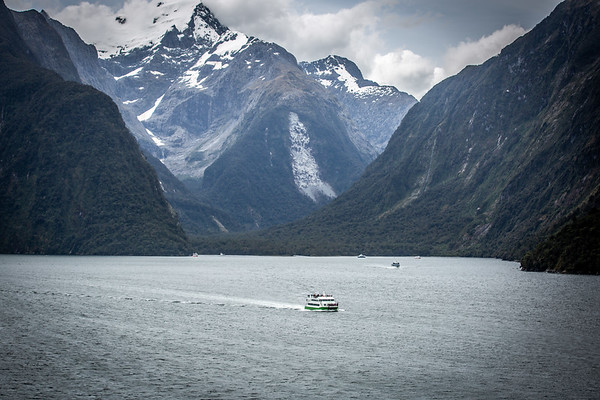 New Zealand - 2019