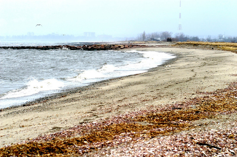 Lordship Beach #2