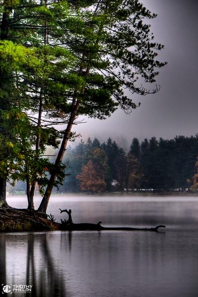 Phelan.Tim.CT.Misty Morning.jpg