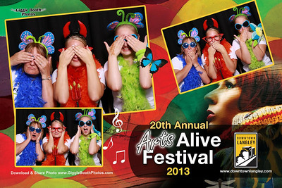 Arts Alive Festival 2013