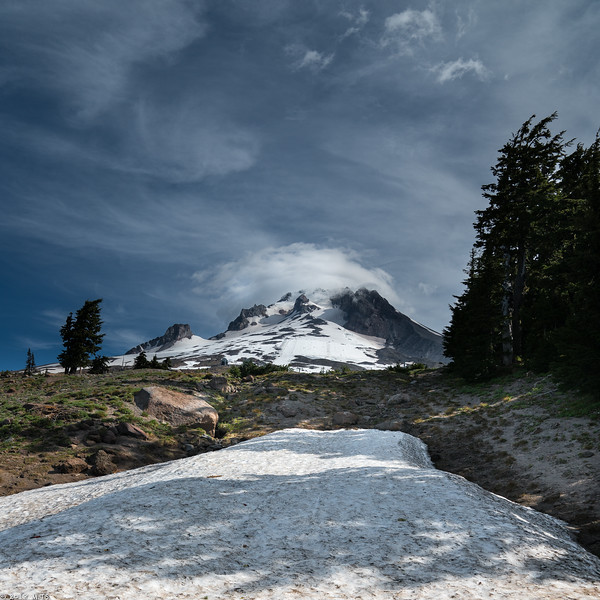 Pacifc Crest Trail at  Mount Hood