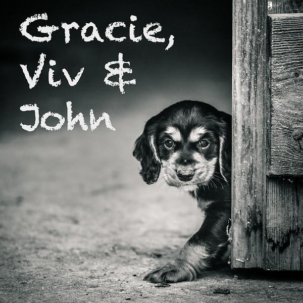 Gracie-Icons.jpg