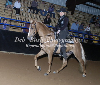 CLASS 22  WALKING HORSE TRAIL PLEASURE OPEN SPECIALTY