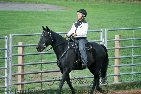Western ADULT W/J Equitation, Pleasure, Horsemanship