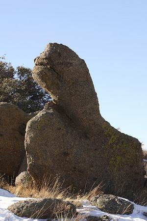 New Mexico - 01-27-07