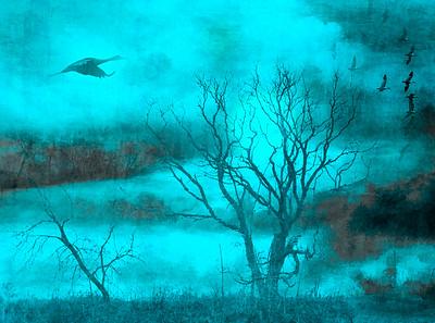 Skies/Atmospheric